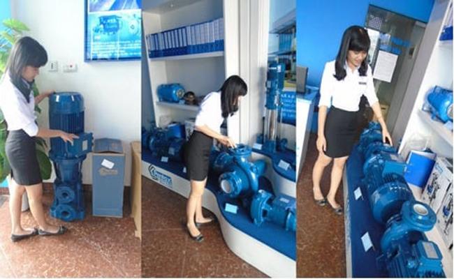 Kinh doanh máy bơm nước Ý Tưởng Kinh Doanh Máy Bơm Nước