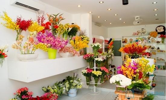 Kinh doanh shop hoa tươi 2019 Ý Tưởng Mở Shop Hoa Tươi 2019